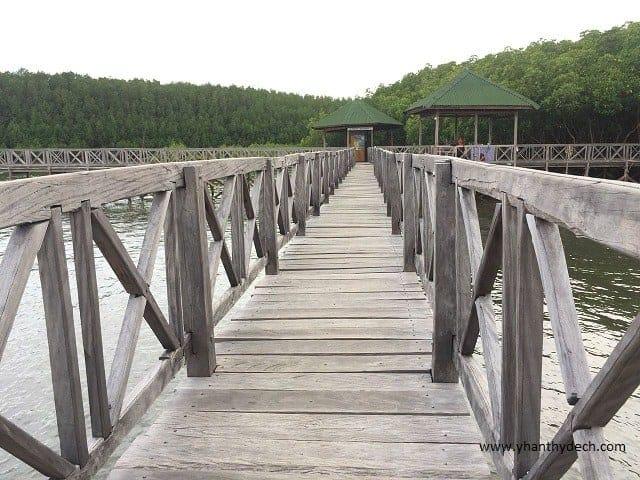 kayu bangkoang